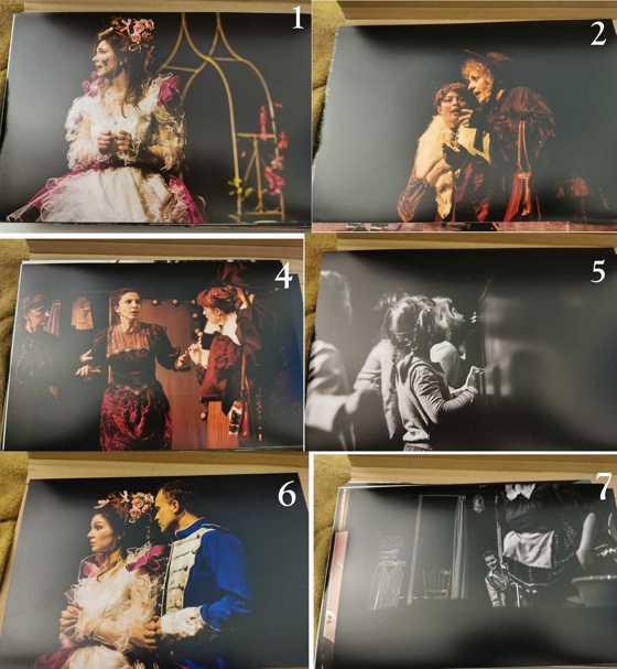 6 zdjęcia